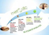 anyagcsere típus diéta